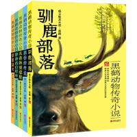 黑鹤动物传奇小说系列(套装共5册)