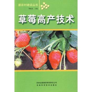 草莓高产技术