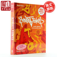 世界街头艺术 英文原版 Graffiti Alphabets:Street Fonts from Around the World Art 精装