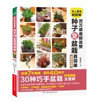百万读者都说赞 种子变盆栽真简单(重印40余次,30种巧手盆栽全图解)