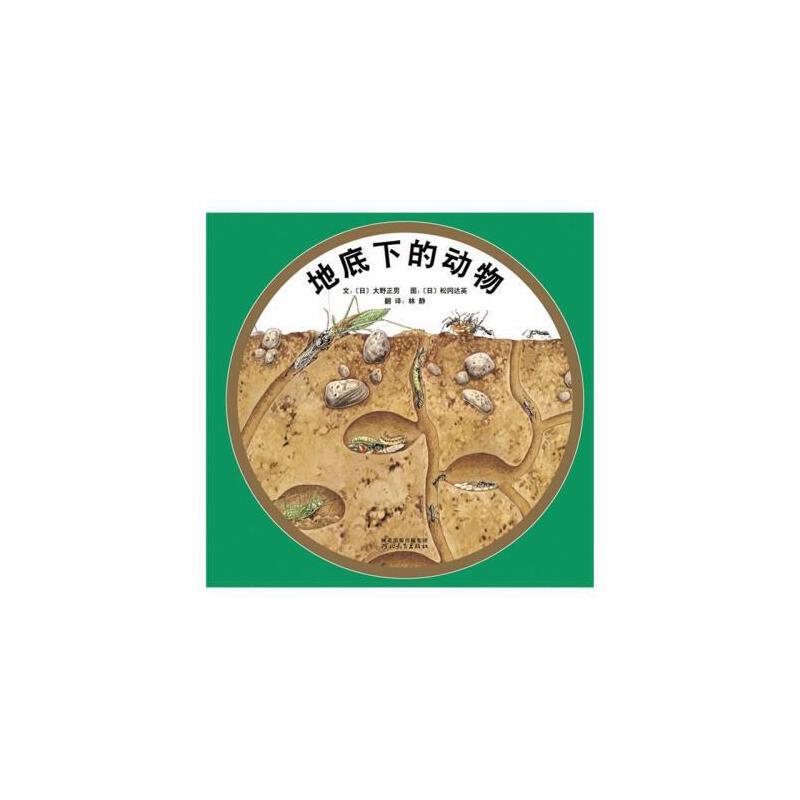 台湾联合报年度图书正版地底下的动物(精)精装启发绘本幼儿童宝宝亲子
