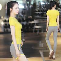 菩�q 瑜伽服套装 女速干服 假两件 瑜珈服 运动服 健身服 含胸垫