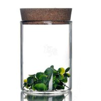 heisou 透明密封玻璃瓶 茶叶罐 花茶普洱茶道储物罐(2个装) AKC-187