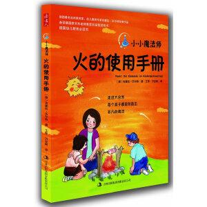 小小魔法师:火的使用手册(风靡全球的亲子互动益智游戏,让孩子在大自然中越玩越聪明,德国著名自然教育家吉塞拉・沃尔特经典作品,德国幼儿教育必读书。)