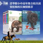 黑鹤动物文学精品系列(当当独家,狼獾河签章版)