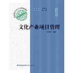 高等院校文化产业基础教材:文化产业项目管理