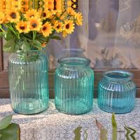 墨菲 欧式现代简约玻璃花瓶 客厅卧室餐桌水培插花器家居装饰摆件