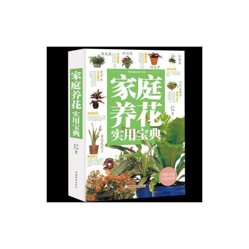 室内植物入门家庭阳台种花技巧宝典养花书籍多肉蔬菜