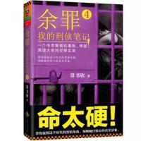 余罪-我的刑侦笔记-4