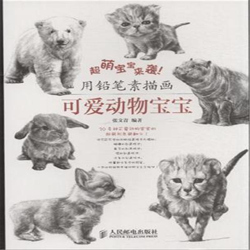 用铅笔素描画-可爱动物宝宝-超萌宝宝来袭!