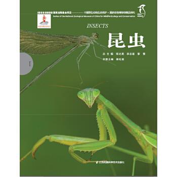 国家动物博物馆精品研究----昆虫