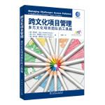 跨文化项目管理:多元文化项目团队的工具箱